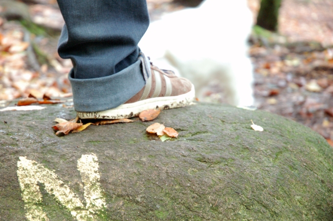foot on rock